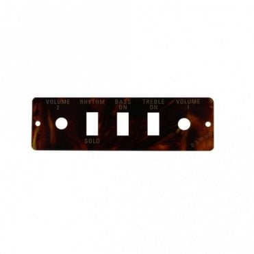 Control Panel '59 Violin Bass Tortoiseshell (HA2BT)