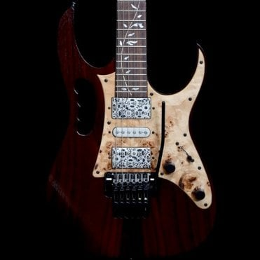 JEM77WDP Steve Vai Signature Electric Guitar with DiMarzio Dark Matter 2 Pickups