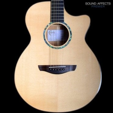 Signature Series Venus Patrick James Eggle Acoustic Guitar w/ Hard Case